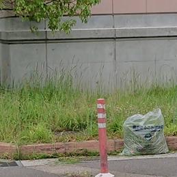 福寿町老人クラブの方々が学校回りを清掃してくださいました!