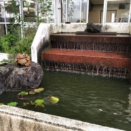 堀津小海洋池(みよいけ)水そうを掃除しました。