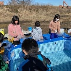 天然記念物イタセンパラなどの住む木曽川水系のワンドでの学習