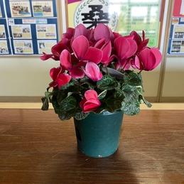 地域の方から卒業記念にお花の飾りプレゼント